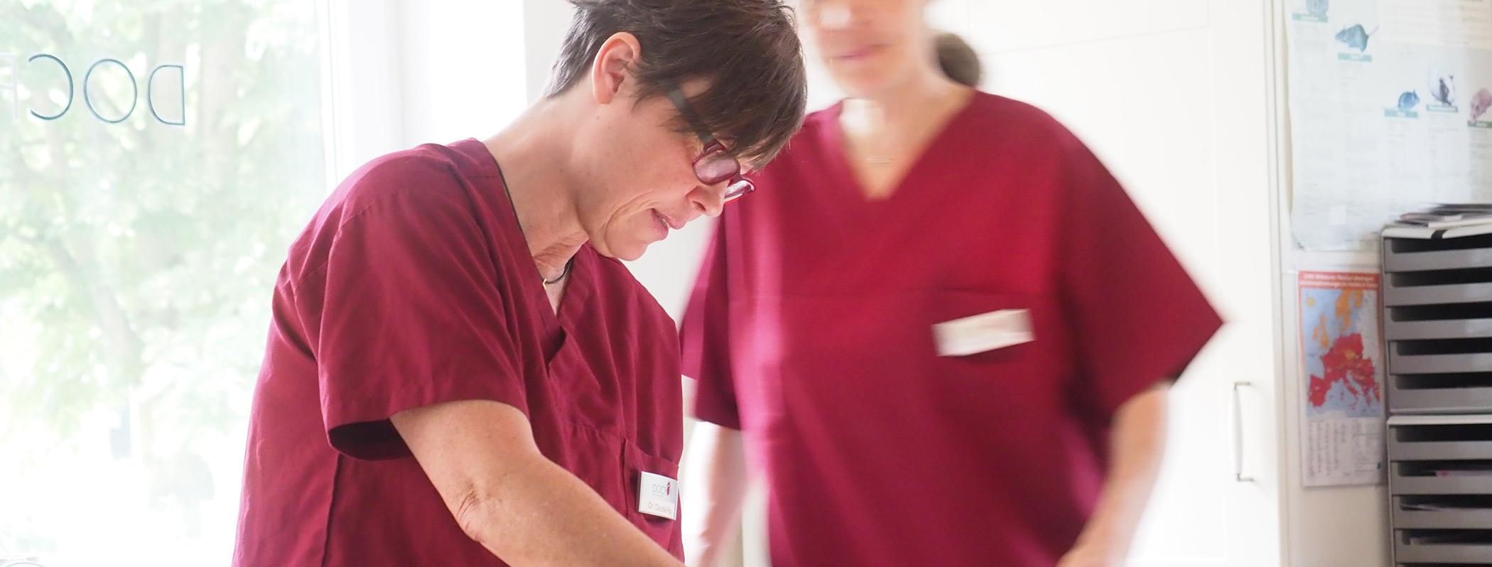 Dr.med.vet. Claudia Pox und Dr.med.vet. Eva George bei der Behandlung