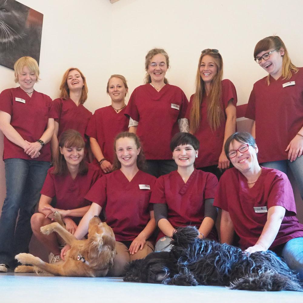 Das Team der Kleintierpraxis DocPox